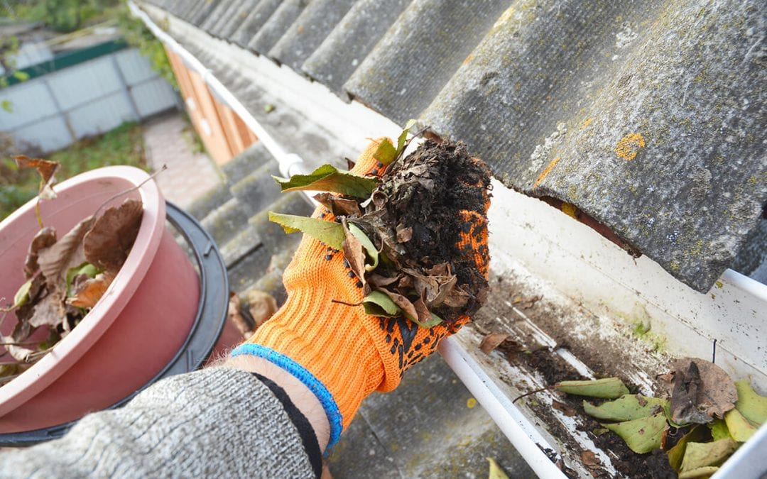 4 Tips to Make Cleaning Gutters Easier